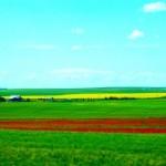 Виды зеленого туризма