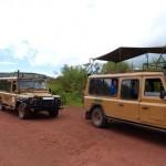 Сафари: охота в Африке