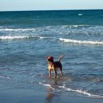 Пляжный отдых в ноябре: куда поехать перед зимой?
