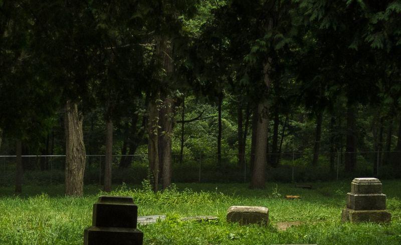 Кладбище Bachelor's Grove