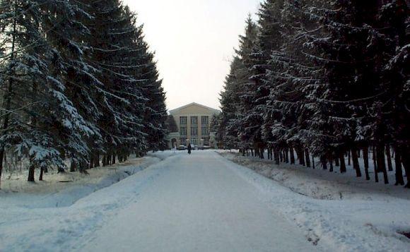 Санаторий Ерино в Подмосковье, Новый год