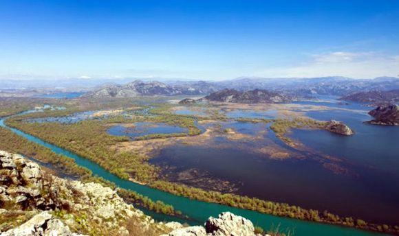 Природа Скадарского озера, Черногория