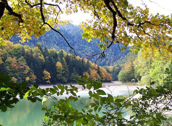 Заповедник Биоградская гора, Черногория