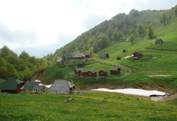 Биоградская гора, Черногория, фото