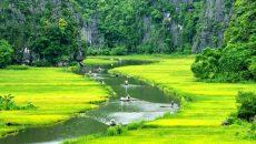 Вьетнам, что привезти на сувениры