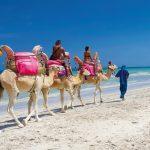 Где лучше отдыхать в солнечном Тунисе