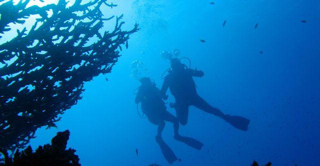 Подводное плавание на курортах Египта