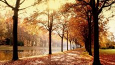 Куда поехать в ноябре