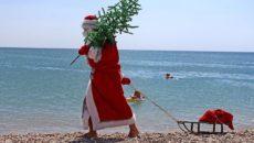 Отдых в Крыму на Новый год 2021
