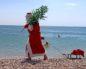В Крым на новый год