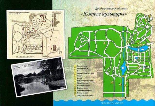 Схема парка Южные культуры