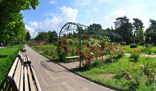 В парке Ривьера Сочи