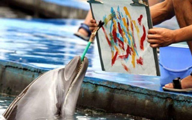 картина написанная дельфинами