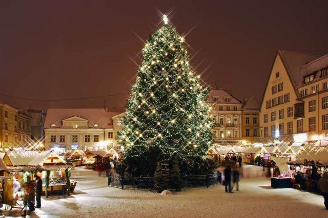 Новогодние елки в Таллине