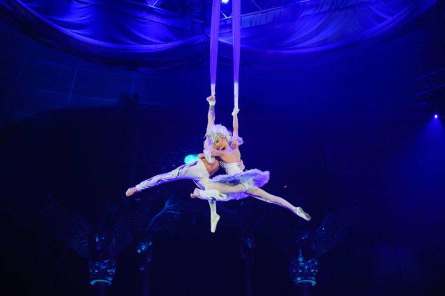 Представления в Цирке Сочи