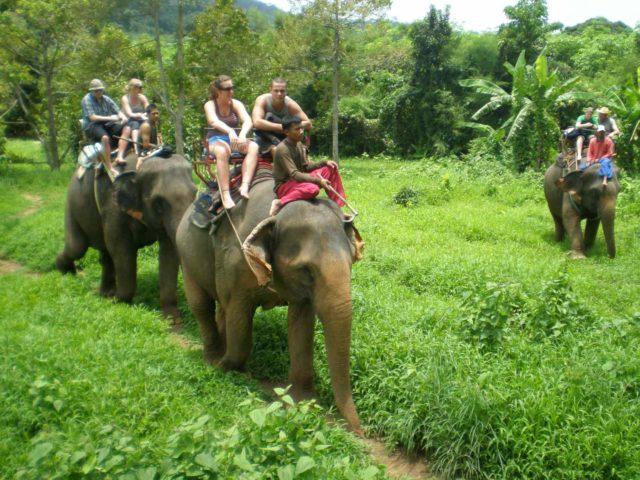 в Таиланде на слонах