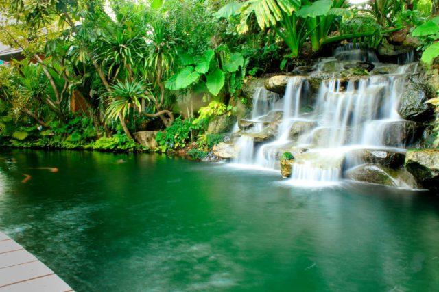 Водопад в Ботаническом саду Пхукета