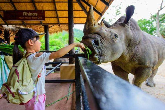 С детьми в зоопарке Кхао Кхео