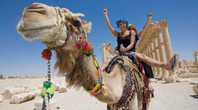 на верблюде в Египте